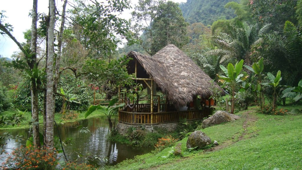 el abrazo del arbol farm | Ecuador | Eco-lodge | Lifenomading | Adventure Travel